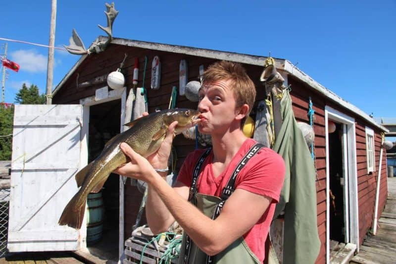 Kissing cod fish