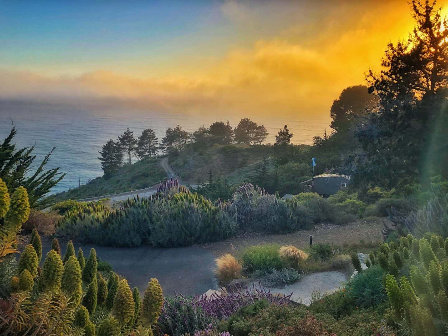 gorgeous big big sur views