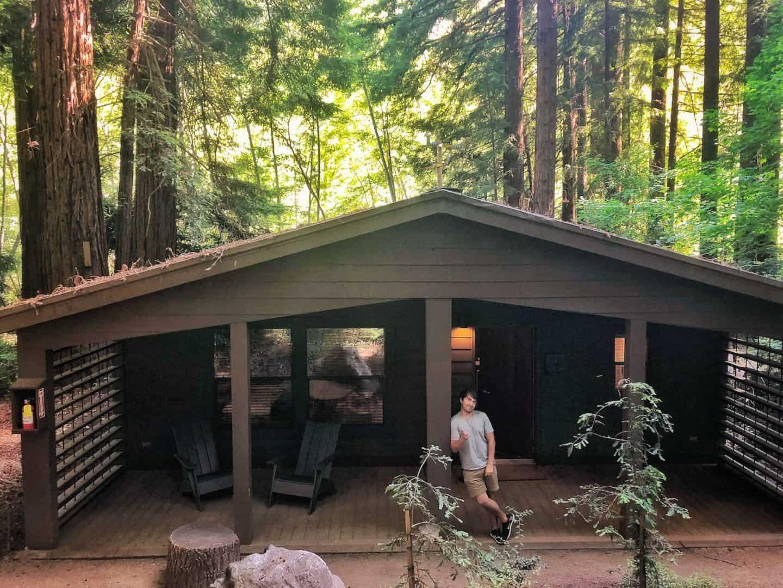 glen oaks log cabin accommodation
