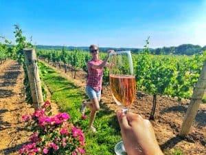 Wine Tasting in Niagara