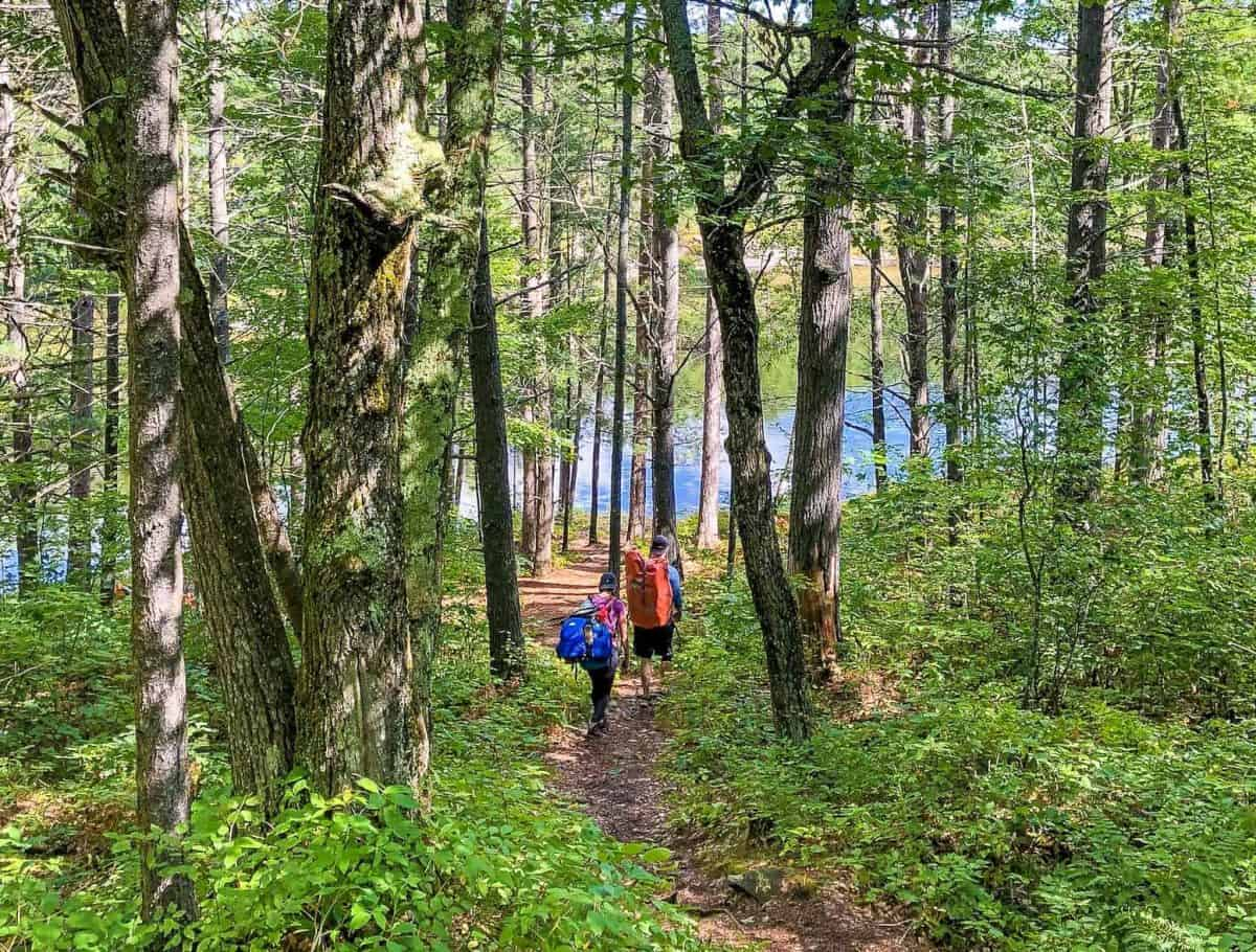 hiking in serpentine loop